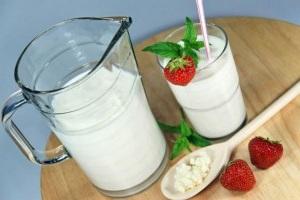 Польза молочного гриба