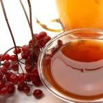 Калина с медом: полезные свойства, описание